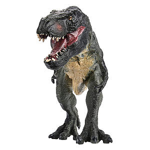 T-Rex Toy Model